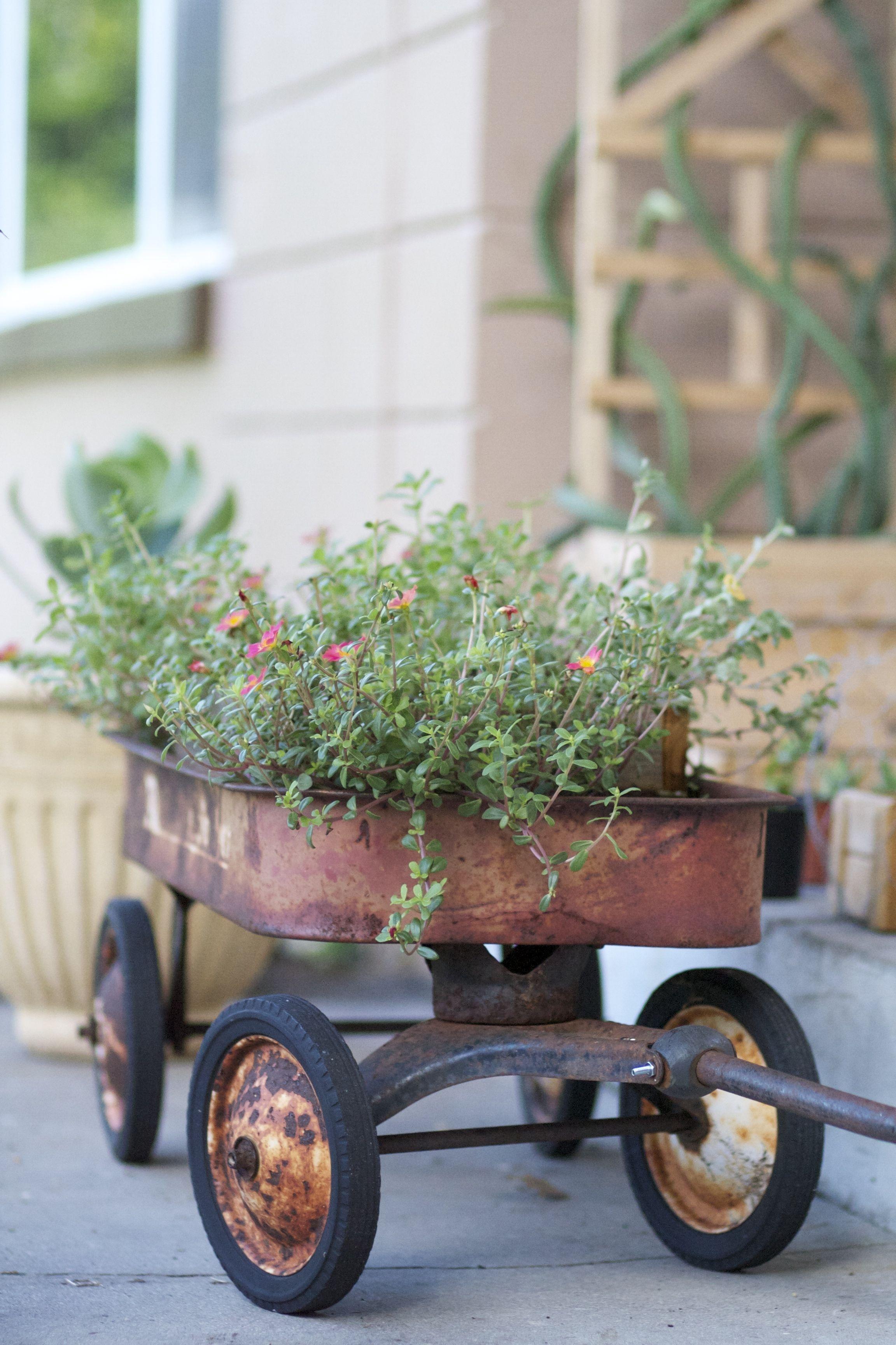 Pursline Wagon.jpg