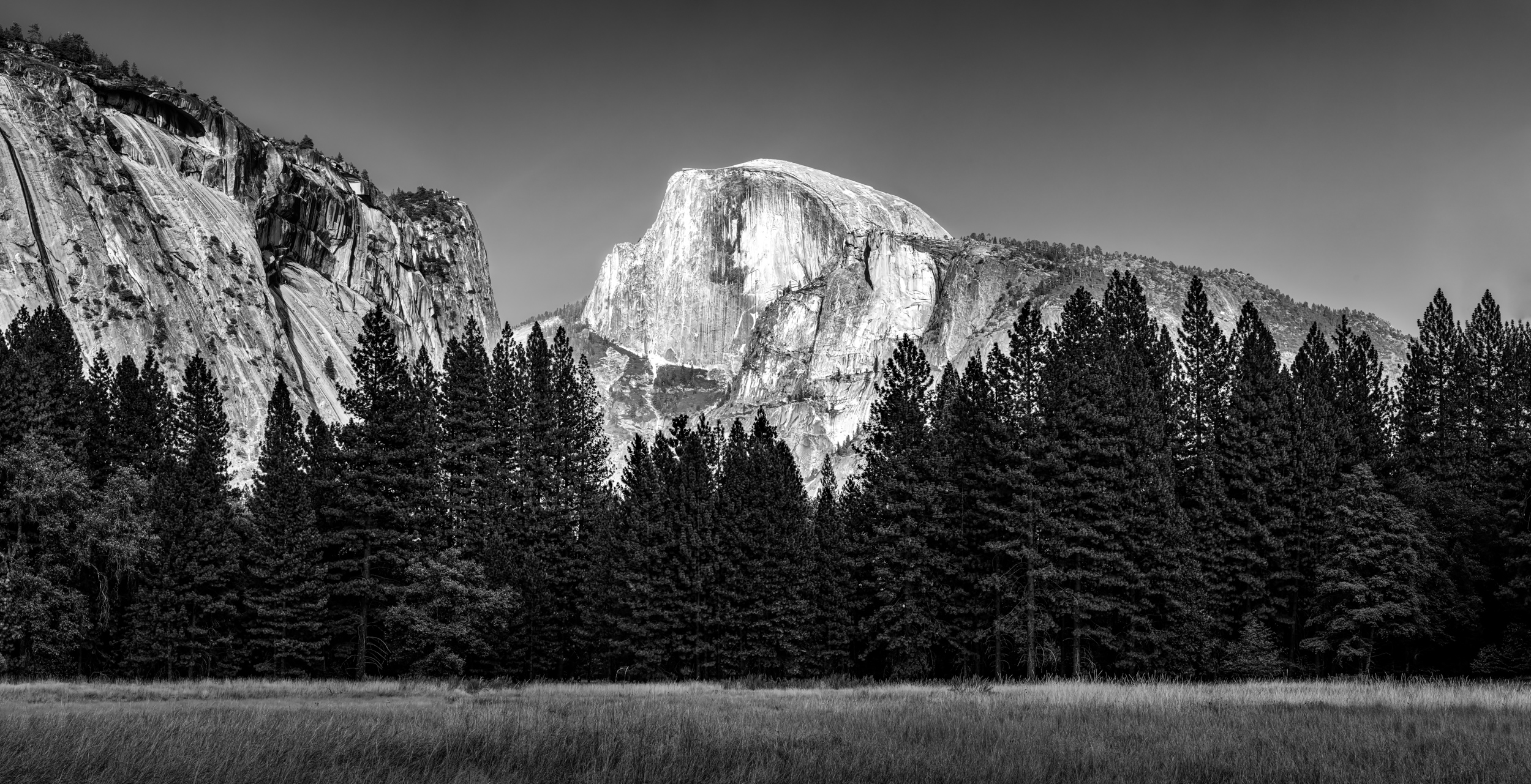 Half Dome from the Valley Floor