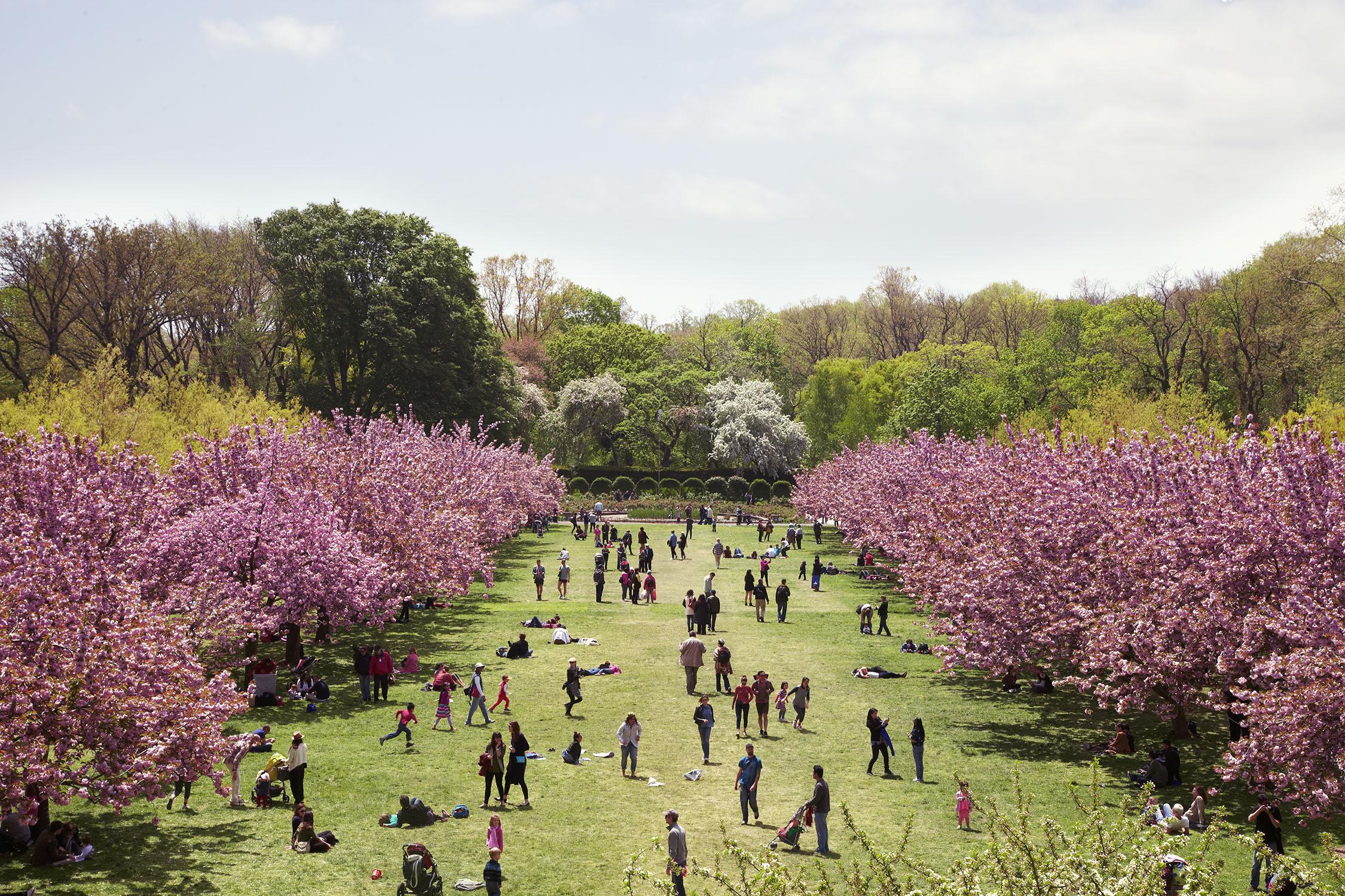 7_Botanic_Gardens.jpg
