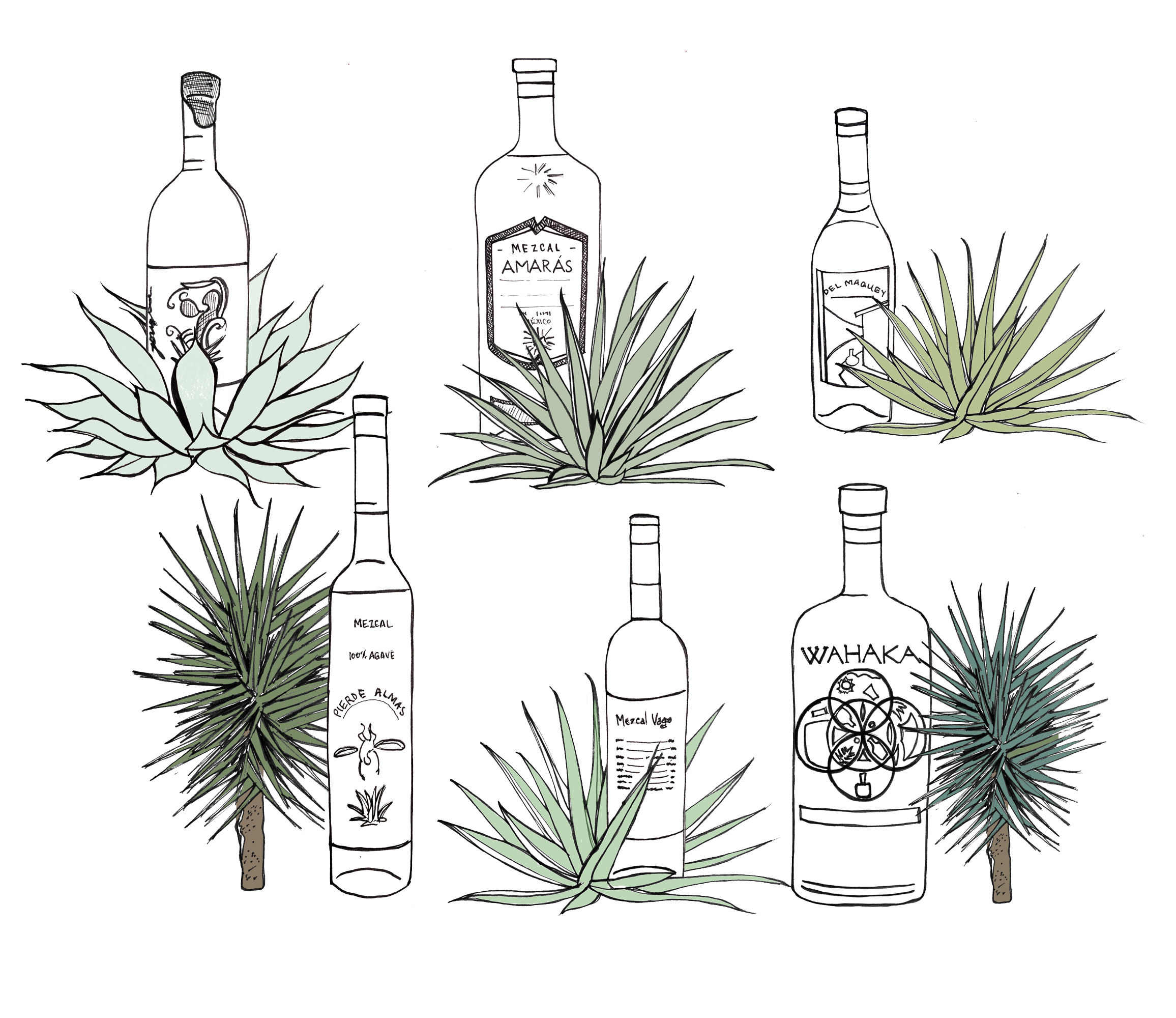 mezcals-all.jpg