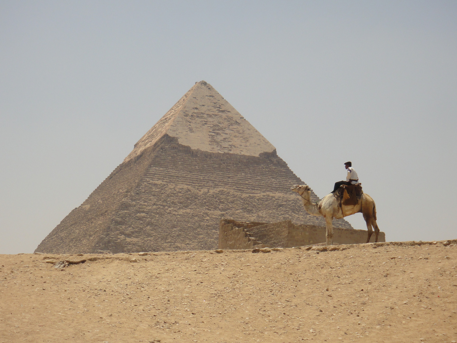 A police man gazes at the Great Pyramid. (Giza, Eygpt)