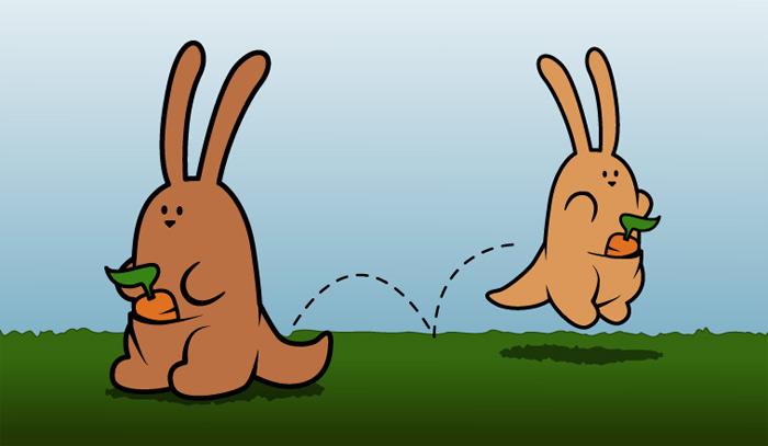 31-kangarooBunny1