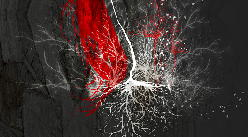 roots_03.jpg