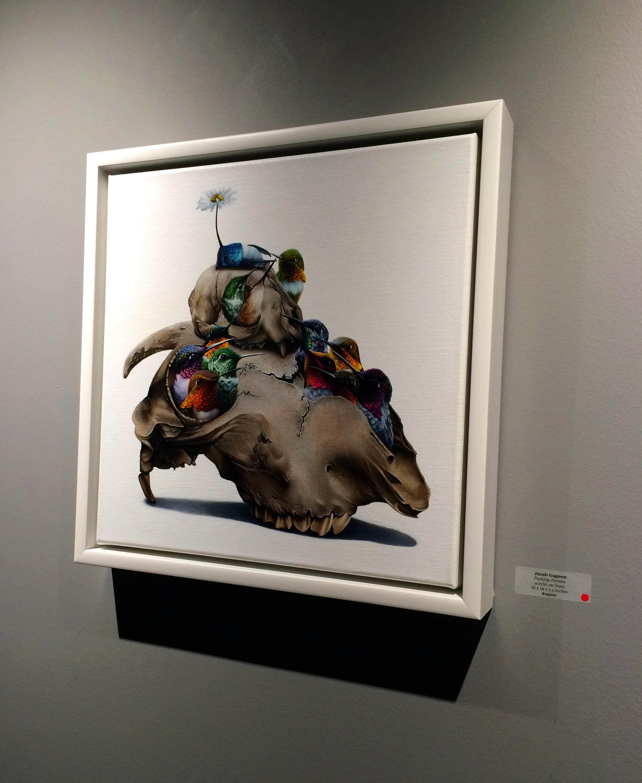 'Pushing Daisies' by Jacub Gagnon.