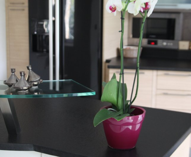 comptoir granit noir plante fleur