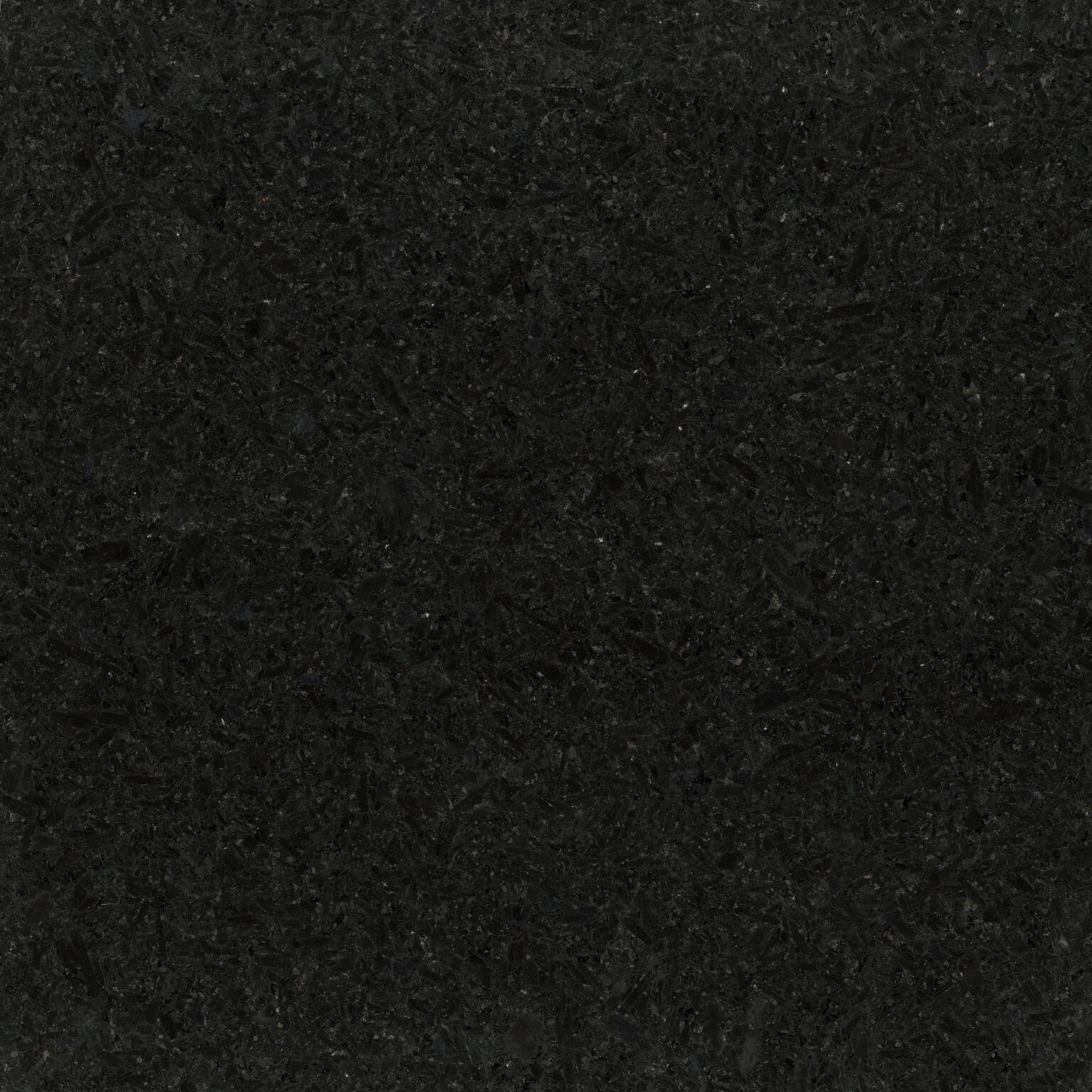 Cambrian Black Poli