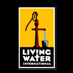 LWI logo.png