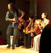 una noche flamenca1.jpg