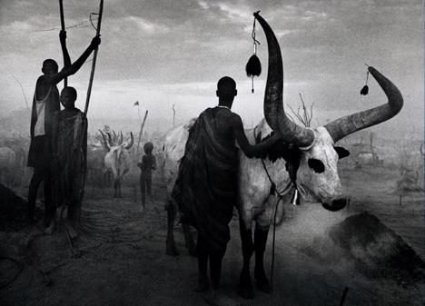 Dinka group at Pagarau, Southern Sudan , from the series  Genesis , 2006