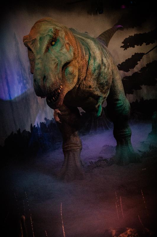 Dinoportraits-1.jpg