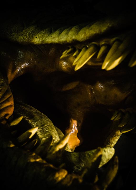Dinoportraits-2.jpg