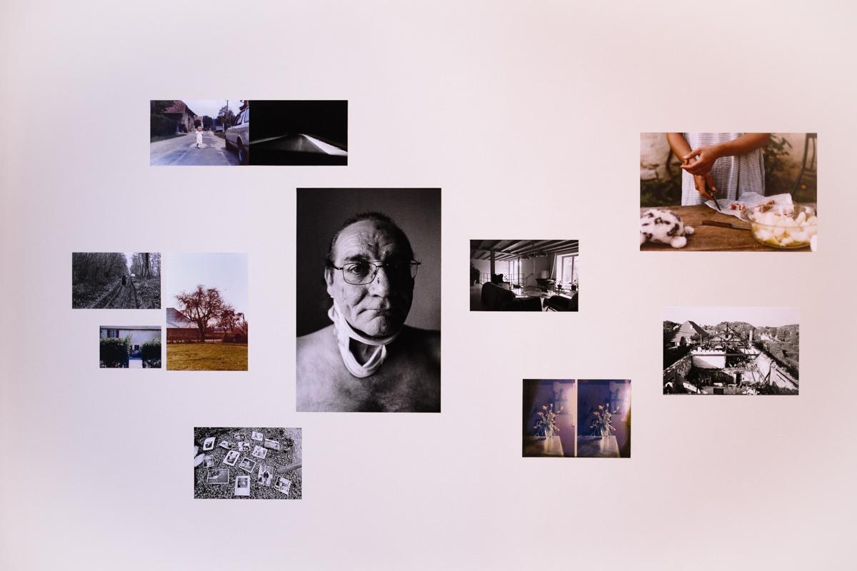 Provia 100f Replichrome Slide Preset
