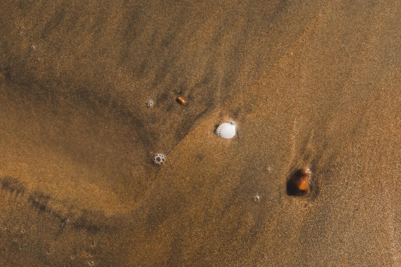 Tide-3.jpg