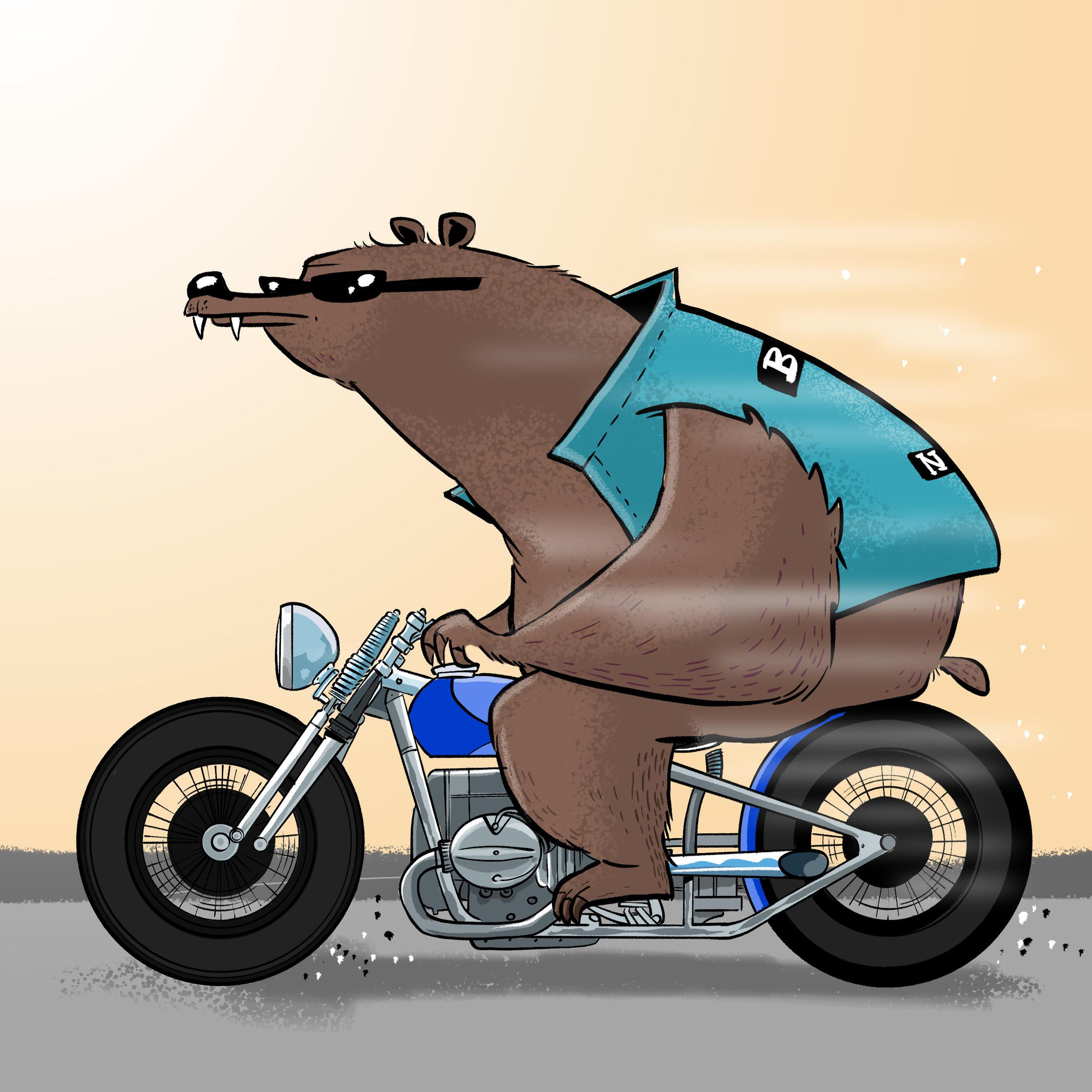 bearbike.jpg