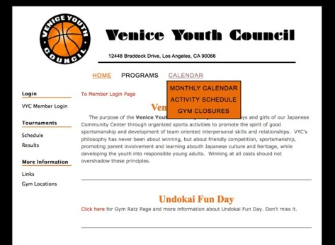 Venice Youth Council