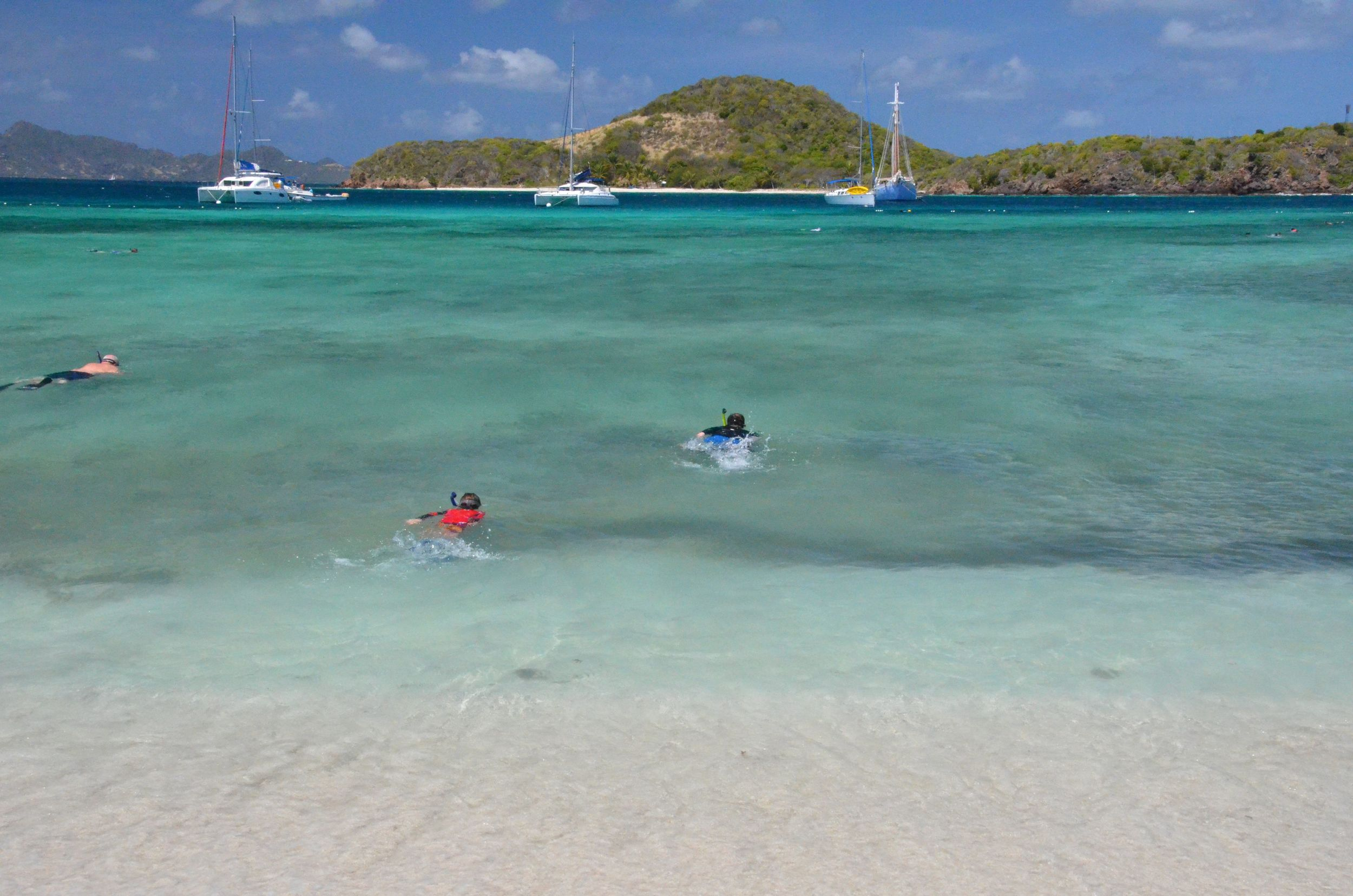 Snorkelers at Tobago Cays