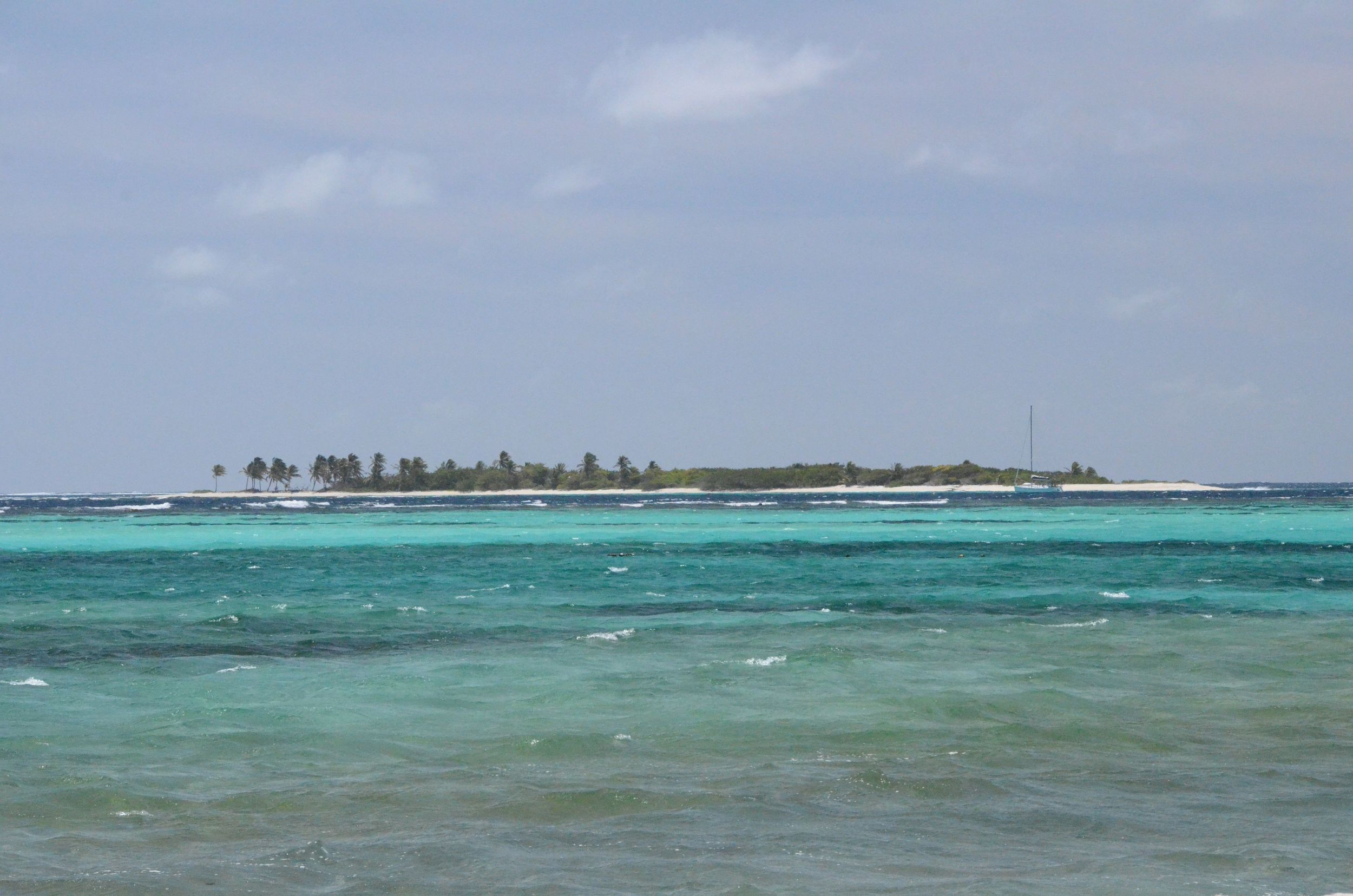 Tobago Cays 3.jpg
