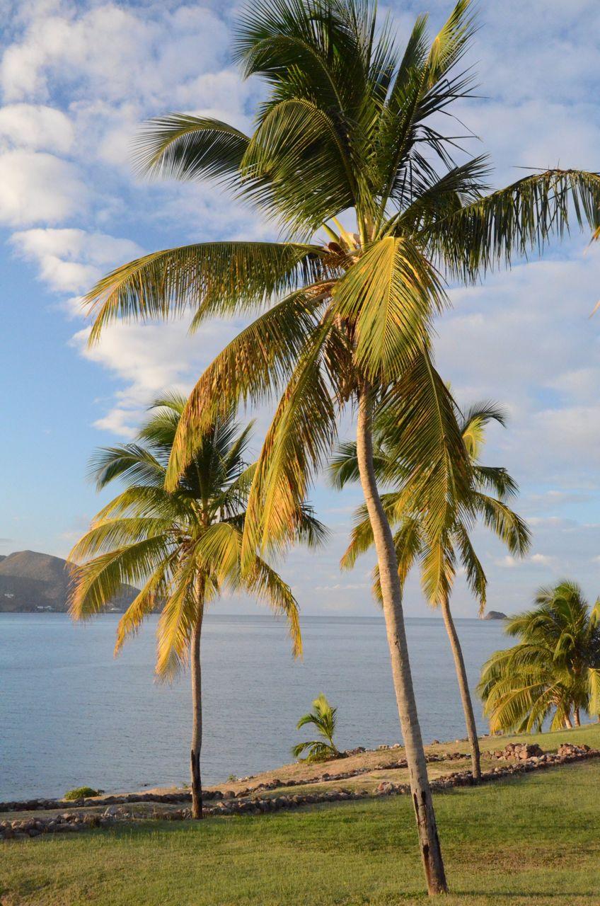 View Towards St Kitts.jpg