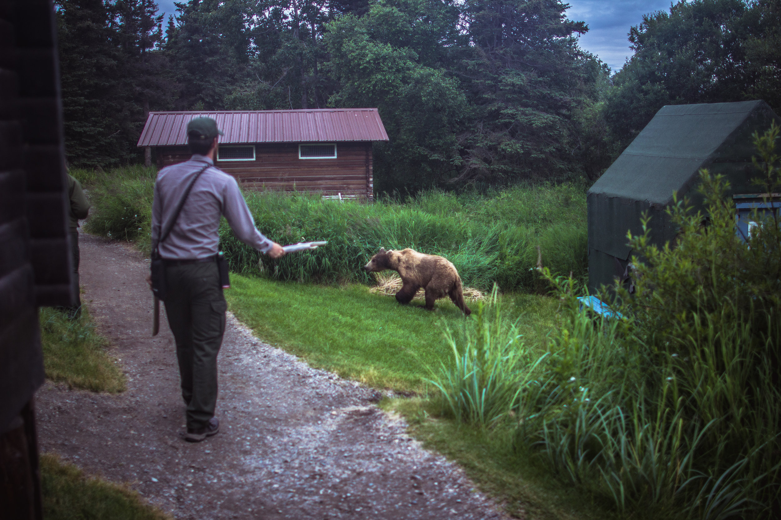 The natural sounds of feet scuffing gravel and branches snapping seem to motivate bears to run away far better than yelling or clapping.