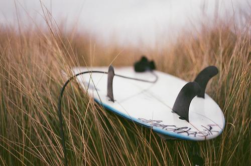 surf grass.jpg