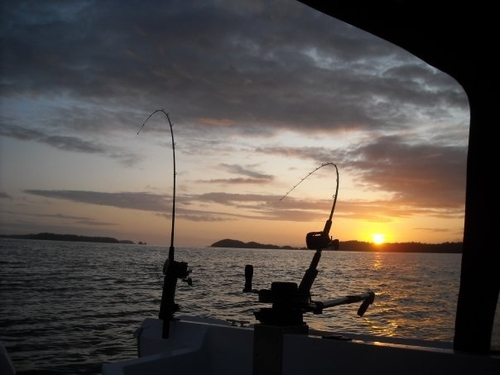 fishing pole sunset.jpg