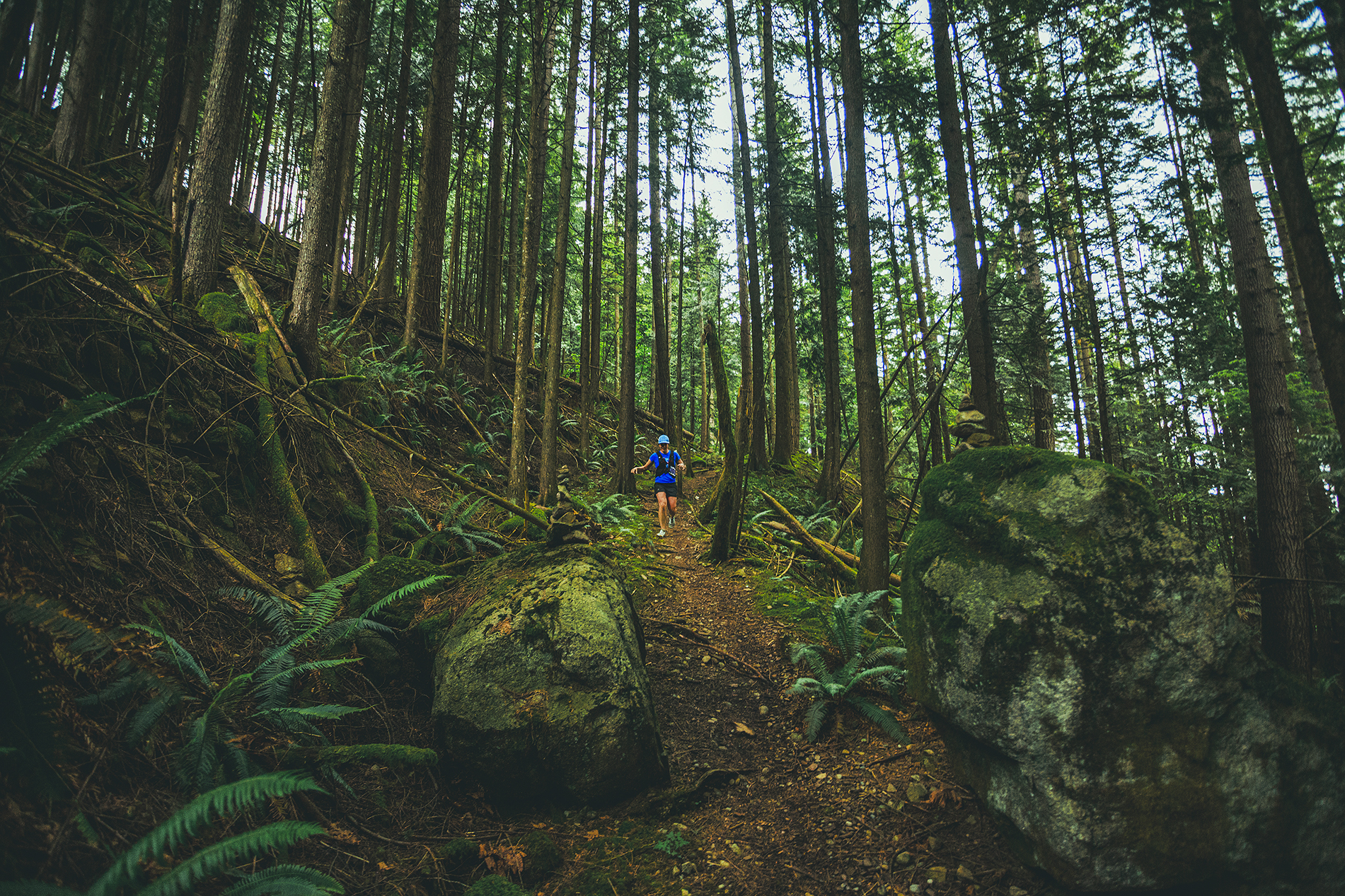 Fraser Valley Trail Races - Bear Mountain - IMG_3079 by Brice Ferre Studio - Vancouver Portrait Adventure and Athlete Photographer.jpg