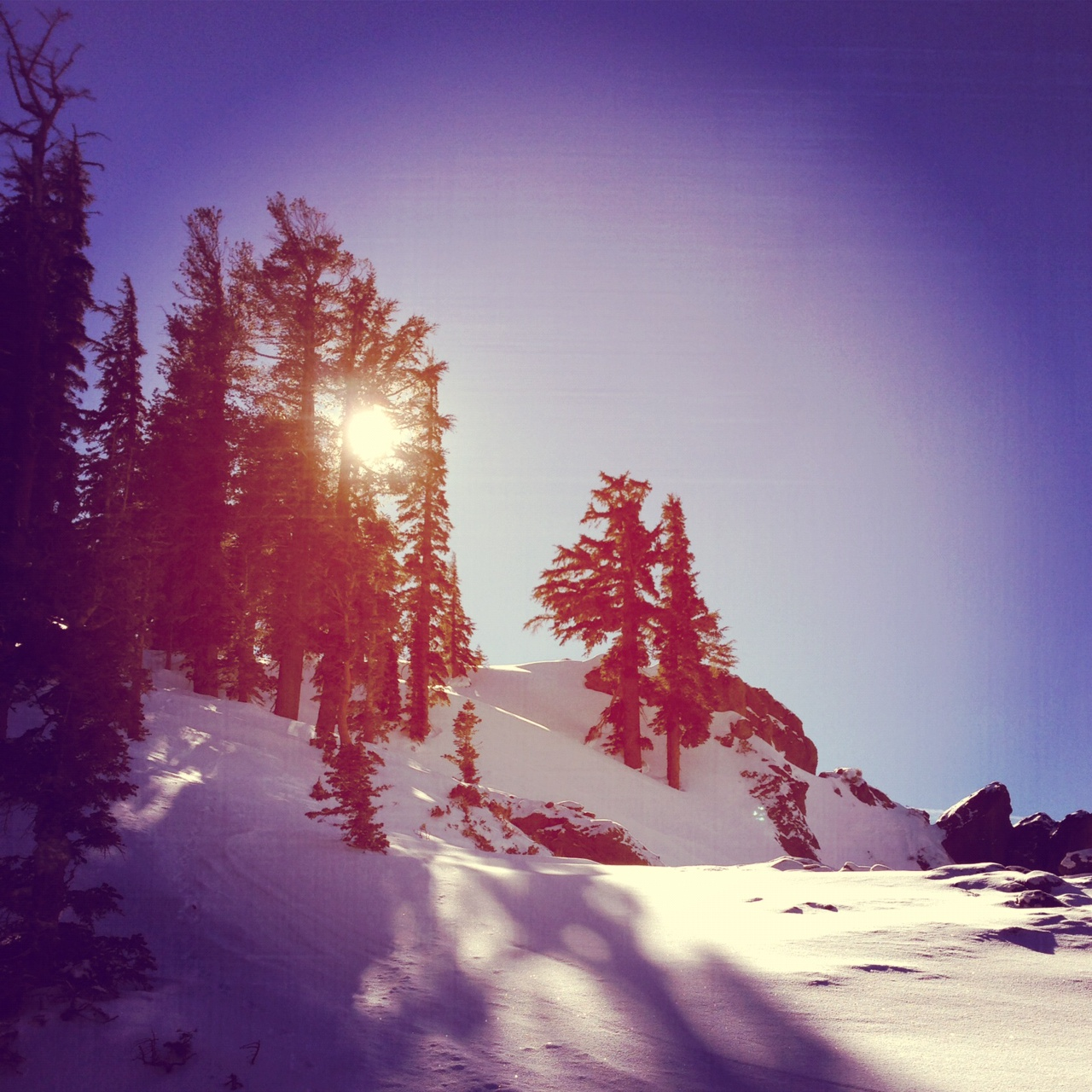 Hiking out to Munchkins at Alpine Meadows