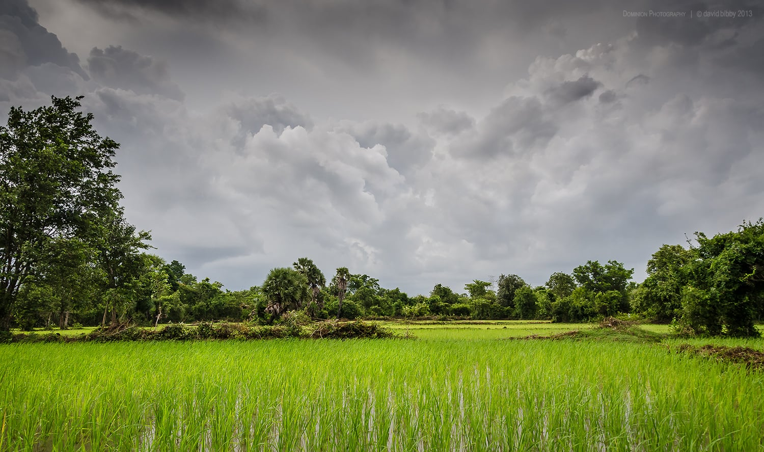 Wet season  - Rice paddies and developing rain. Kampong Cham Province, Cambodia.