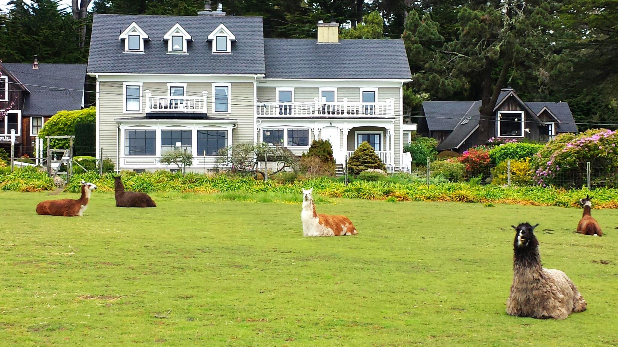 Click image for  Glendeven Inn