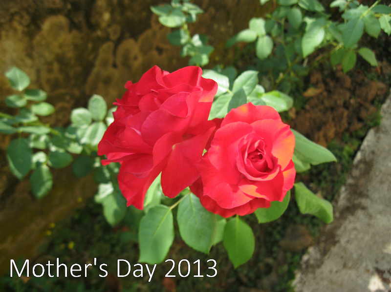 mothers day 2013.jpg
