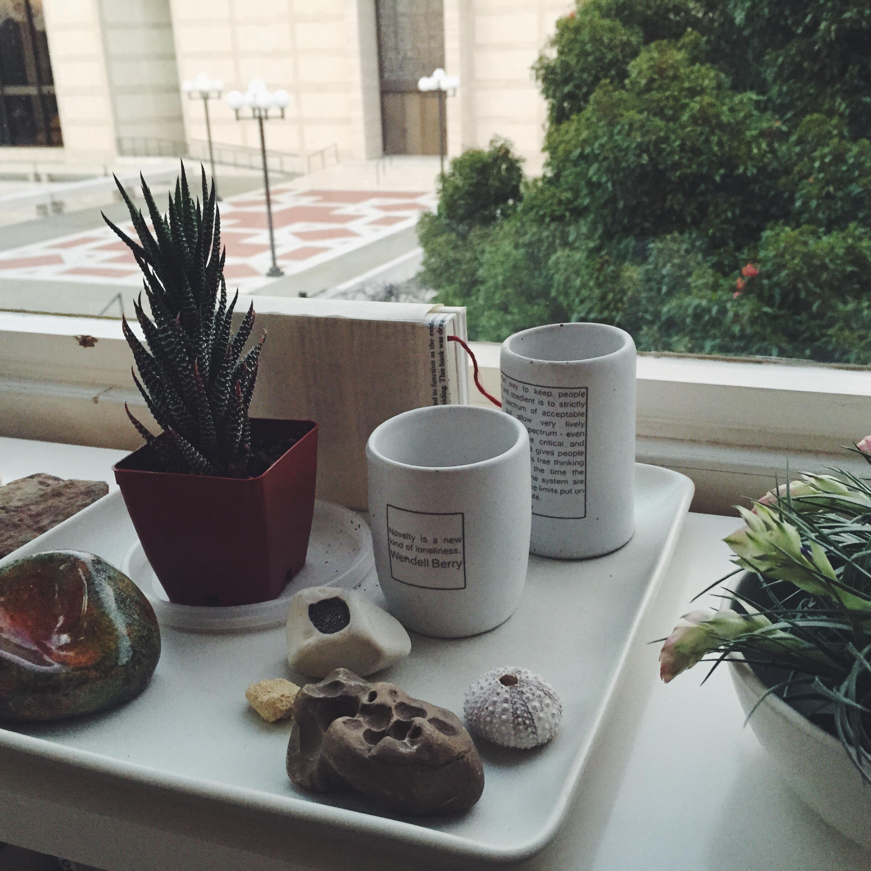 cups_mara+steven'shome2.jpg