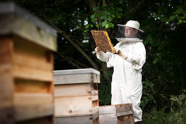 I Am Series Beekeeper Editorial Location Photography Richard Pardon Hertfordshire