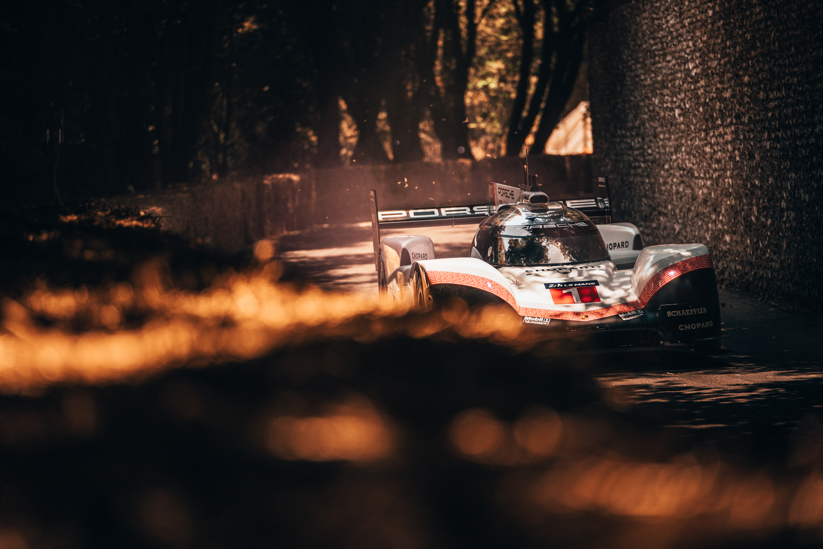 RP - Porsche Goodwood Fesitval of Speed 70 Years 2018-95.jpg