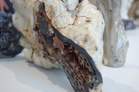 Figure 20.  Jenny Mackenzie Ross , Detail of '  Coralline Tide '  [soda fired stoneware, porcelain - variable dimensions] Photograph by Peter Haring.