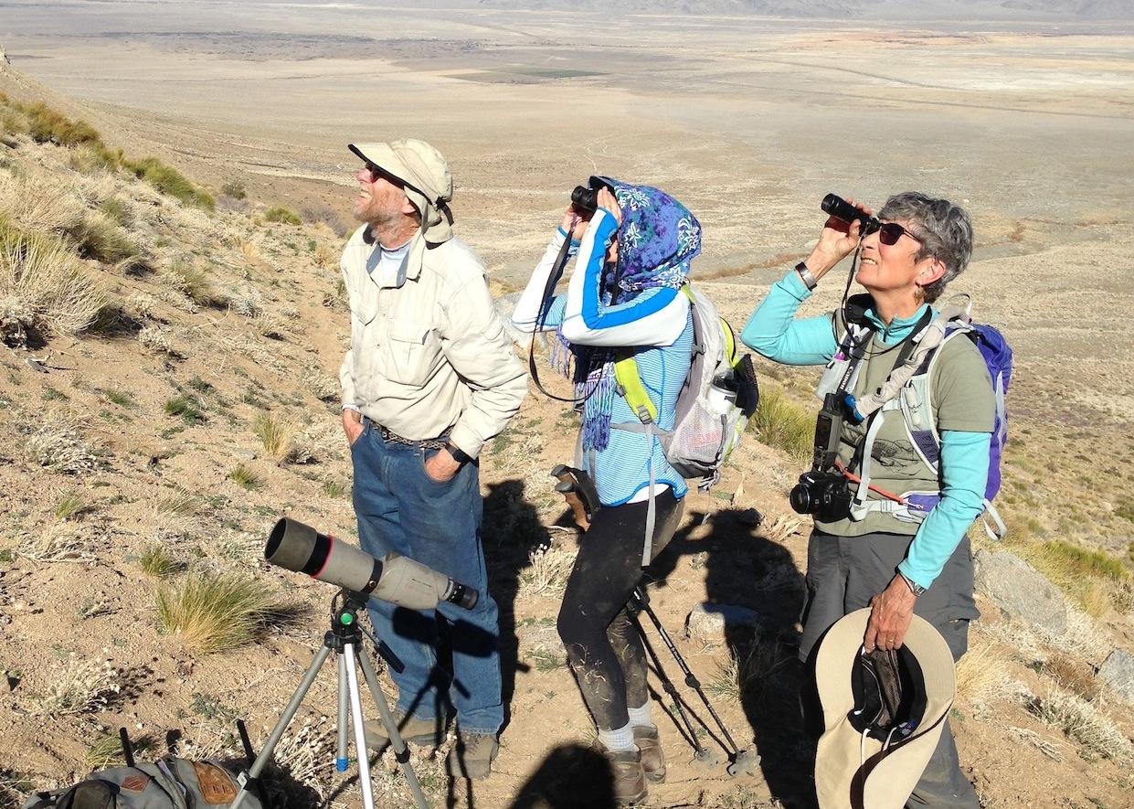 Looking for Bighorn Sheep: John, Monique and Ginnie