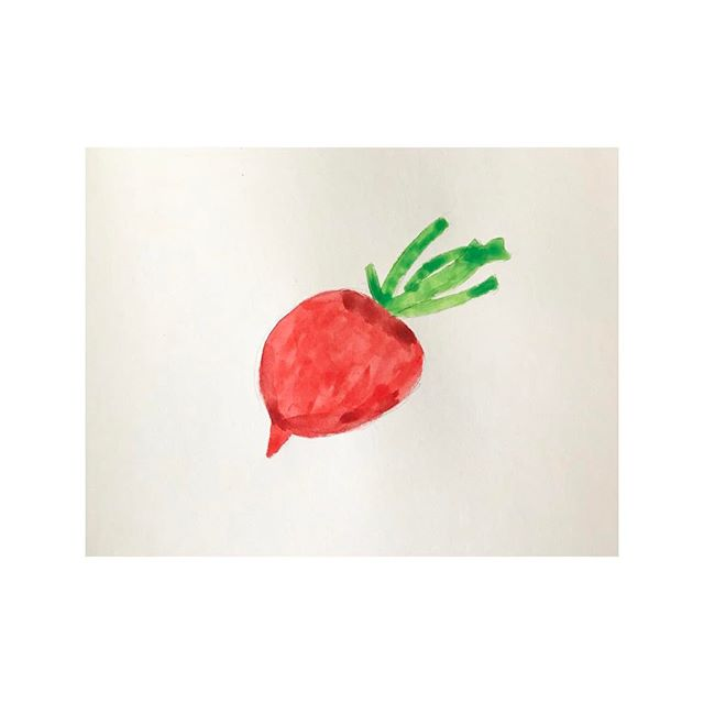 My little radish. . . . . #100dayproject #100beautifulthings #womenwhodraw #first100days #the100dayproject #watercolor #radish
