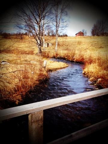 Vår magiska bäck som rinner igenom vår gård.