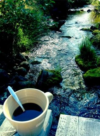 Morgonkaffe vid bäcken