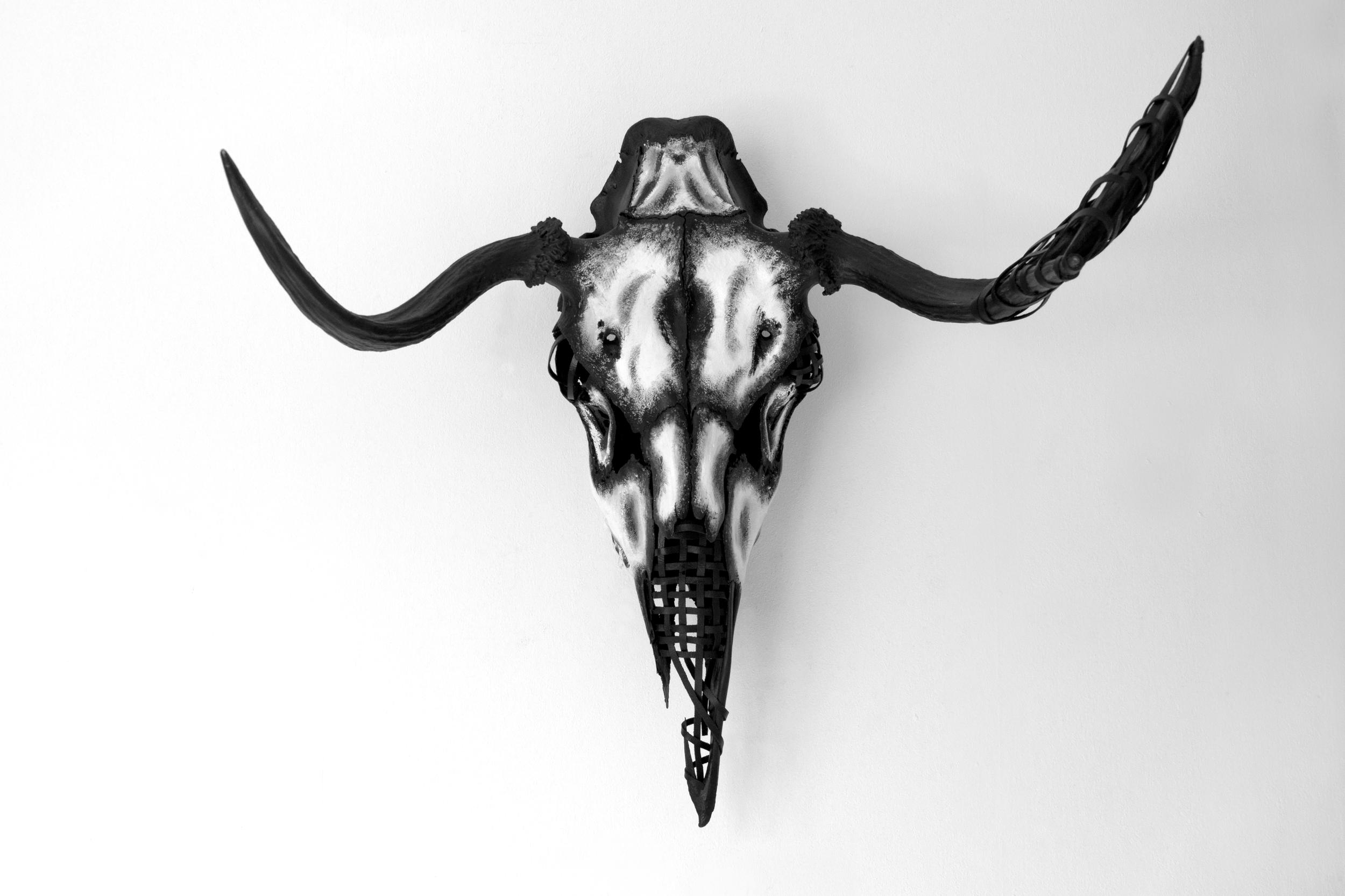 petra-shara-stoor-skull-art-vey-1.png