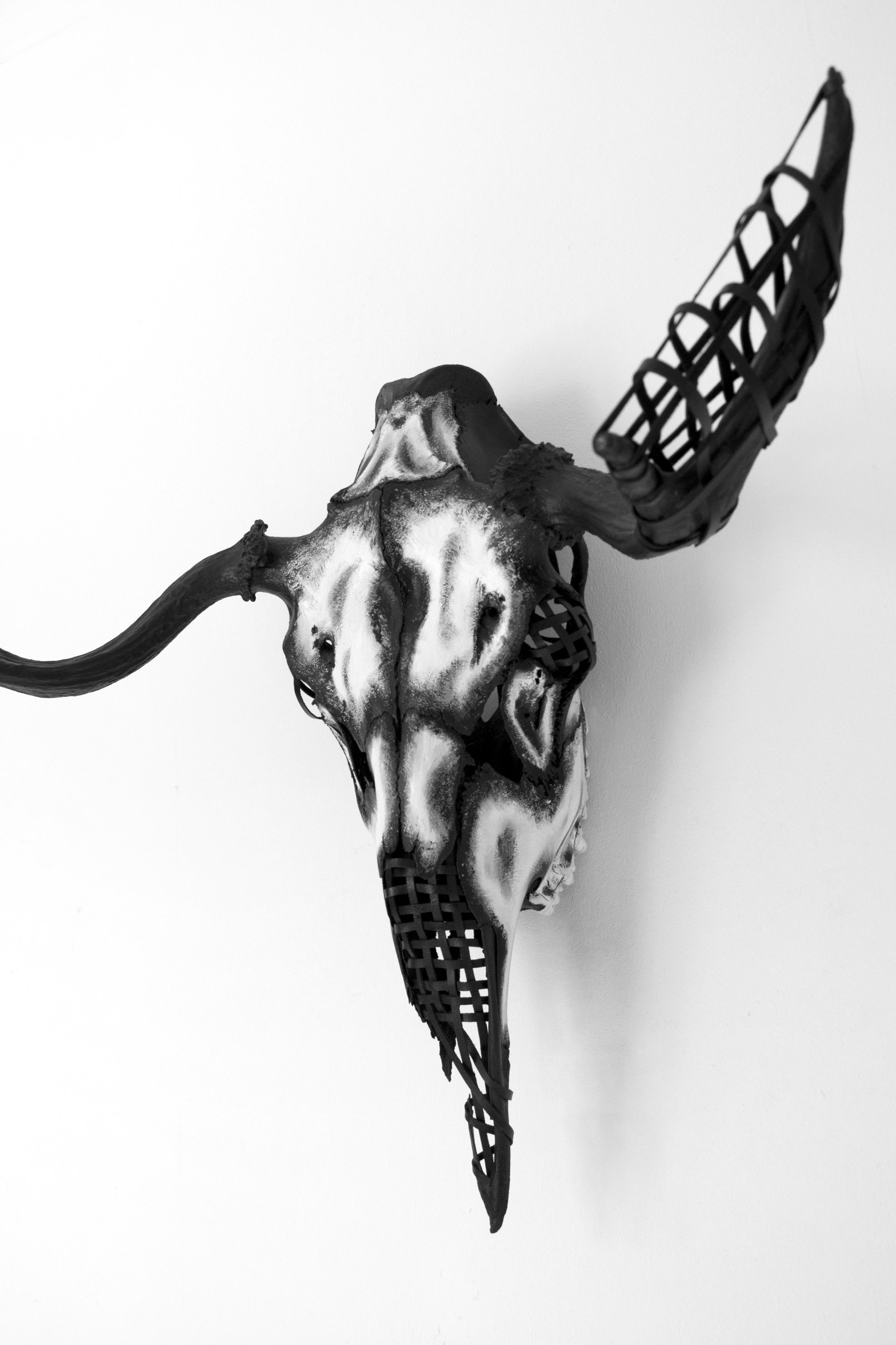 petra-shara-stoor-skull-art-vey-2.png