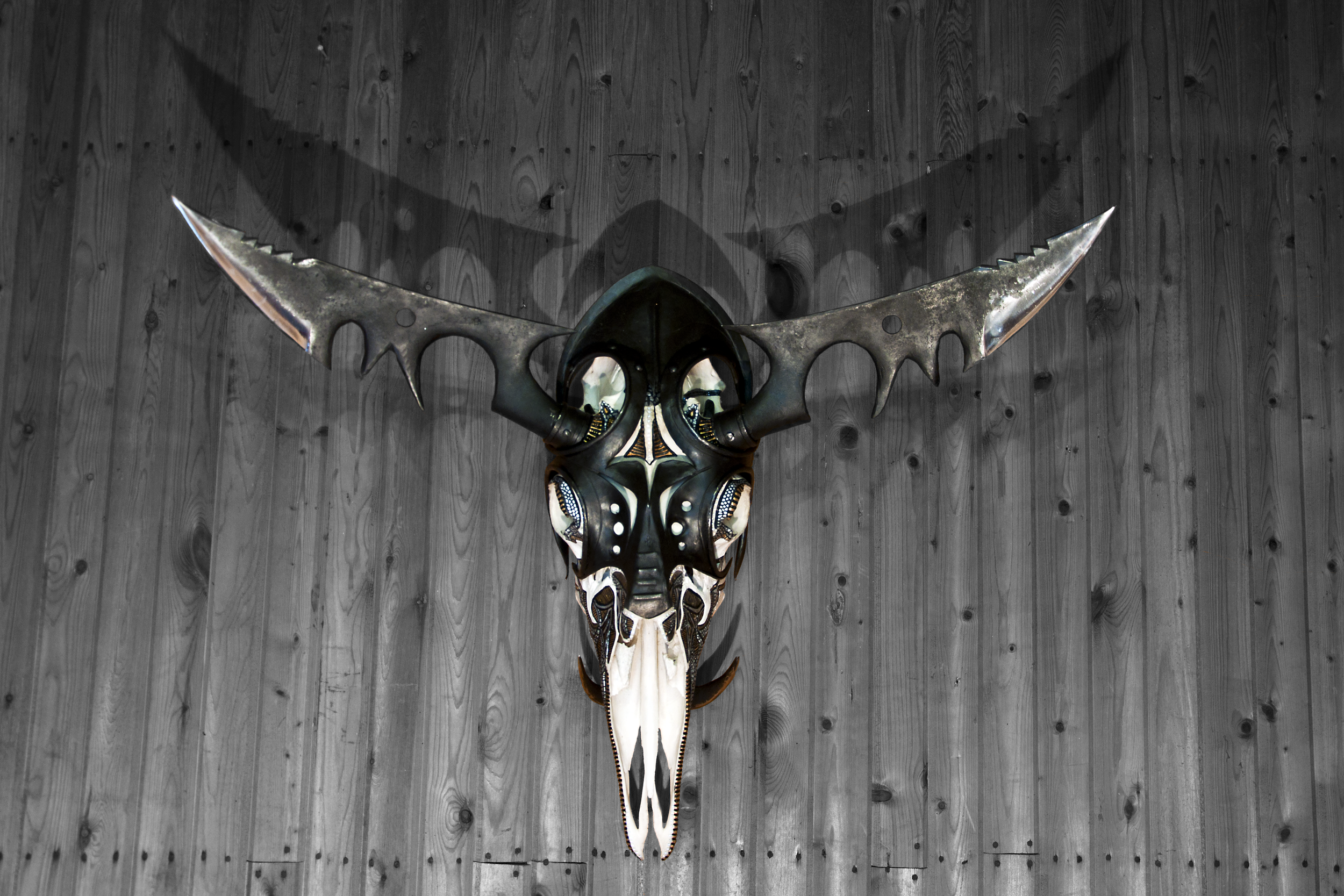 petra-shara-stoor-skull-art-galwan-1.png