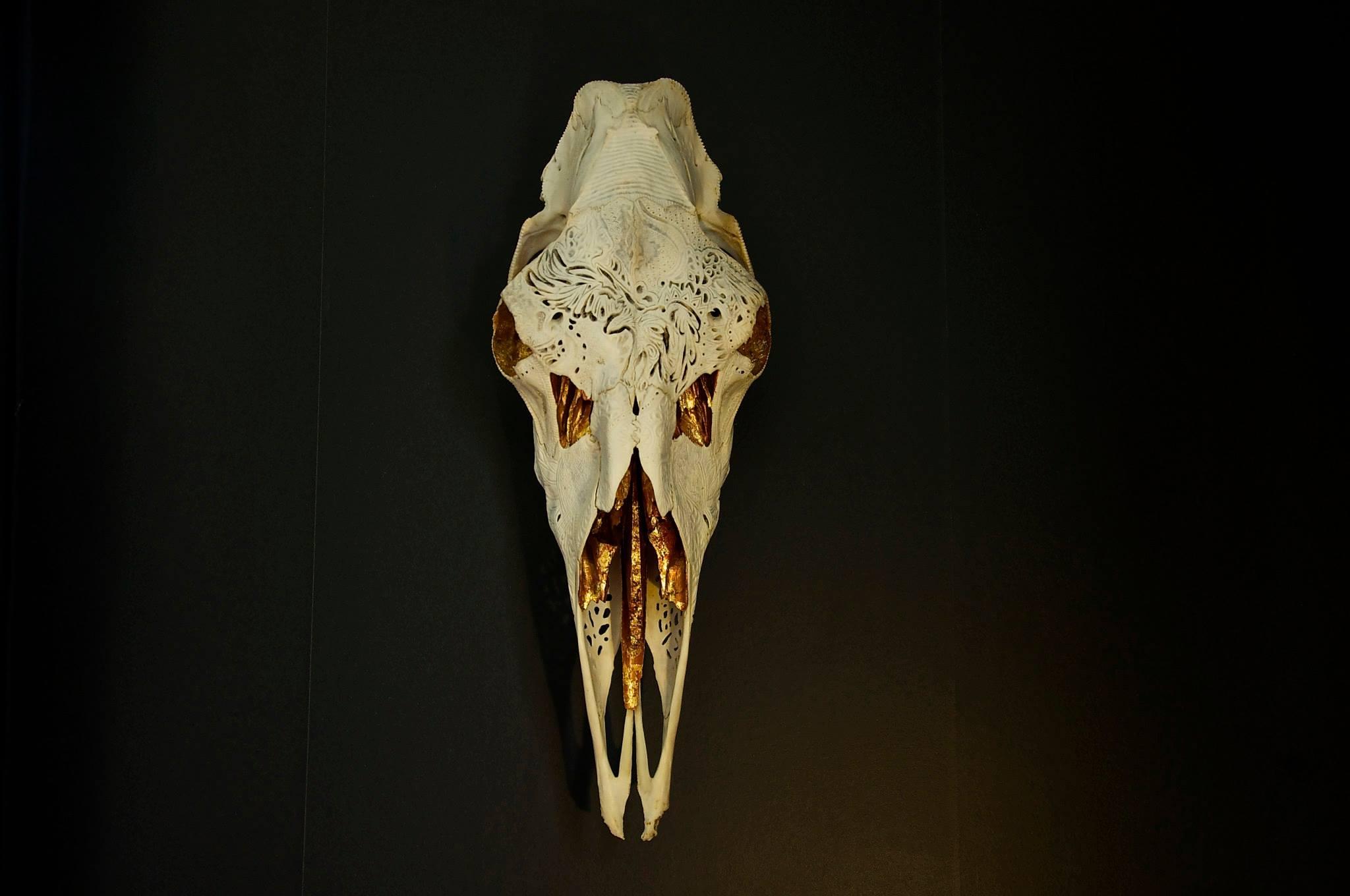 petra-shara-stoor-skull-art-duilith-1.jpg