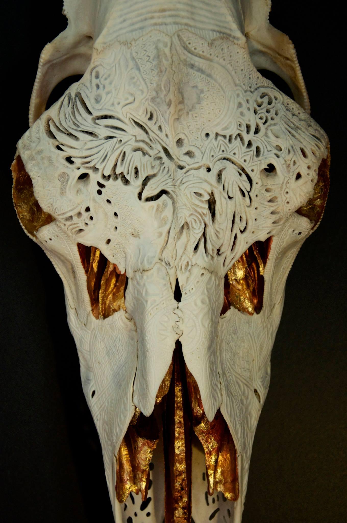petra-shara-stoor-skull-art-duilith-3.jpg