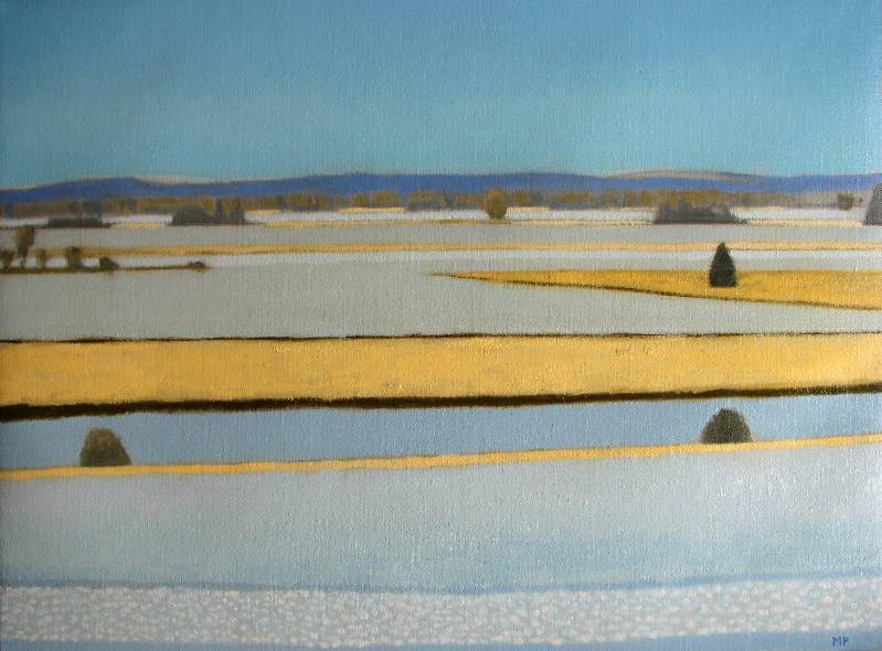 Snow Field, 2008