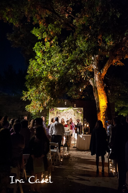 Photo by Ira Casel. Birch wall, ceremony lighting, and mason jar installation by Eggsotic Events