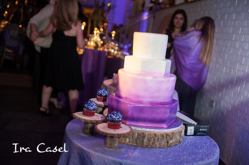 Eggsotic Events NJ NYC Event Design Luxury Bat Mitzvah Stone House at Stirling Ridge Warren NJ Gemstones Birch Organic Art Nature Theme Decor and Lighting 40.jpg