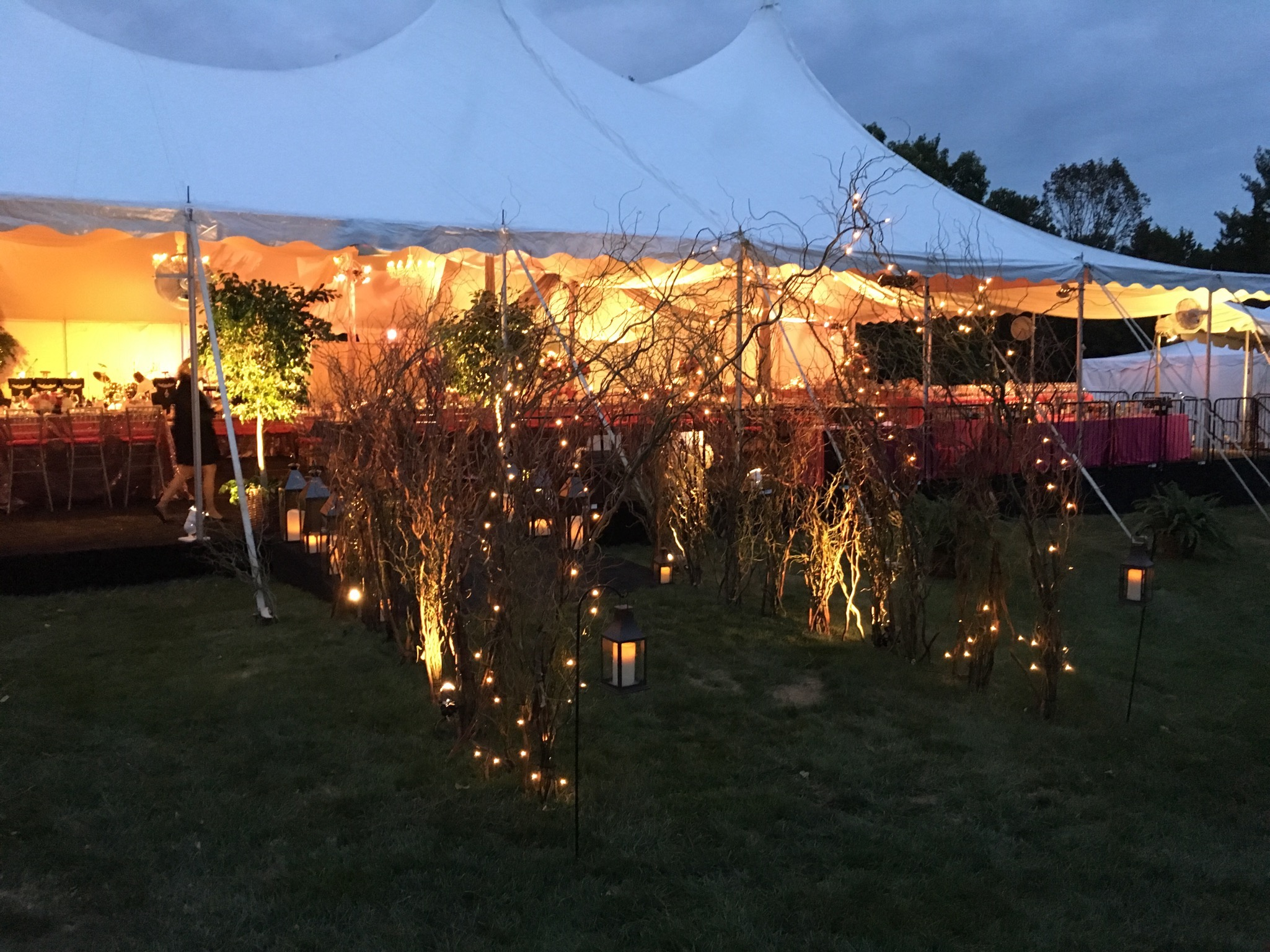 A branch tunnel helps light the way to an outdoor fall wedding,