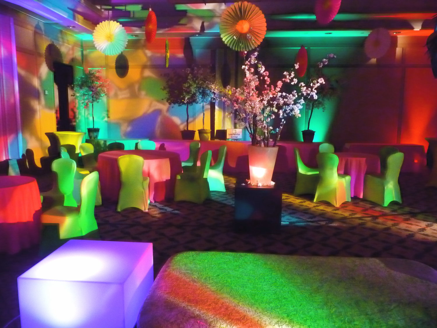 NJ+event+design+decor+lighting+rentals+gala+fundraiser+auction+school.jpg