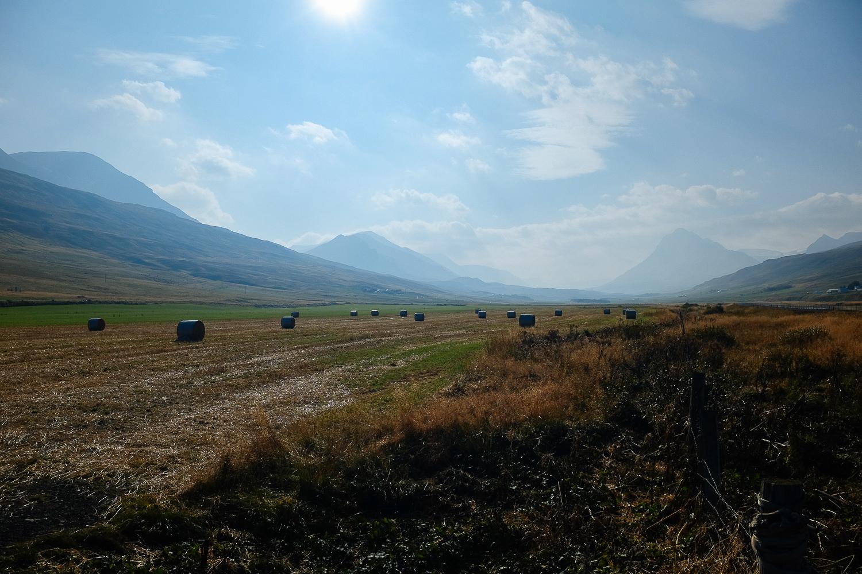 GoKateShoot-Iceland-3.jpg