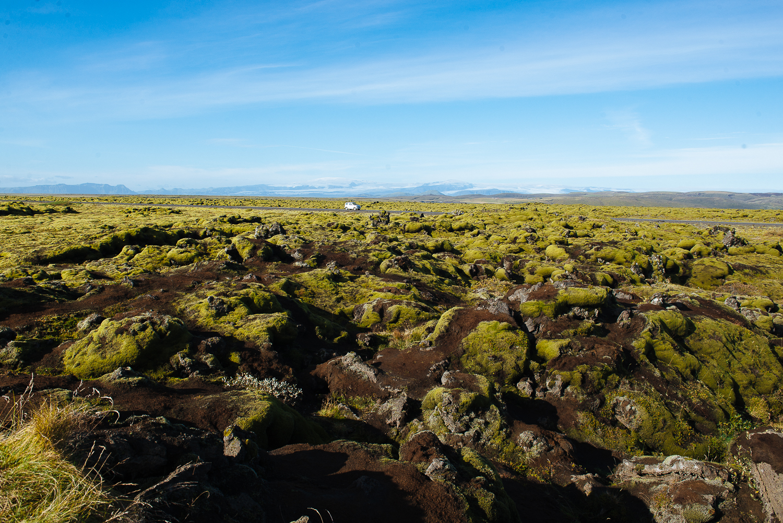 GoKateShoot-Iceland-154.jpg
